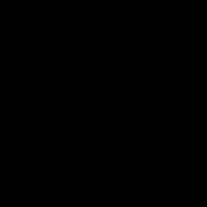 logo_fuzdy