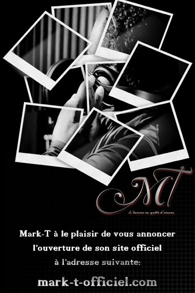 2013-sticker_site_mark_t